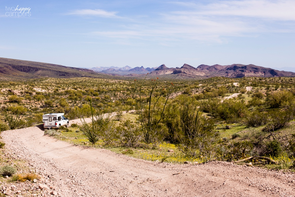 Standard Road off-roading Lake Havasu City